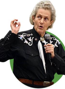 Temple-Grandin-Academia-DogSolution